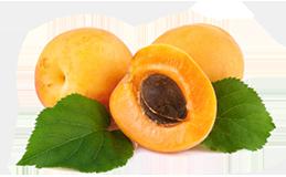 Масло абрикосовой косточки